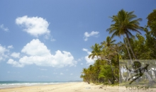 Great Tropical Drive (Cairns to Cairns) 6 nights