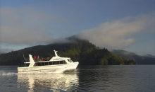 Early Bird Eco Cruise